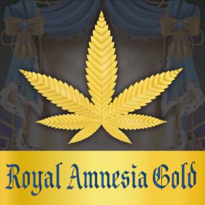 royalamnesiagold